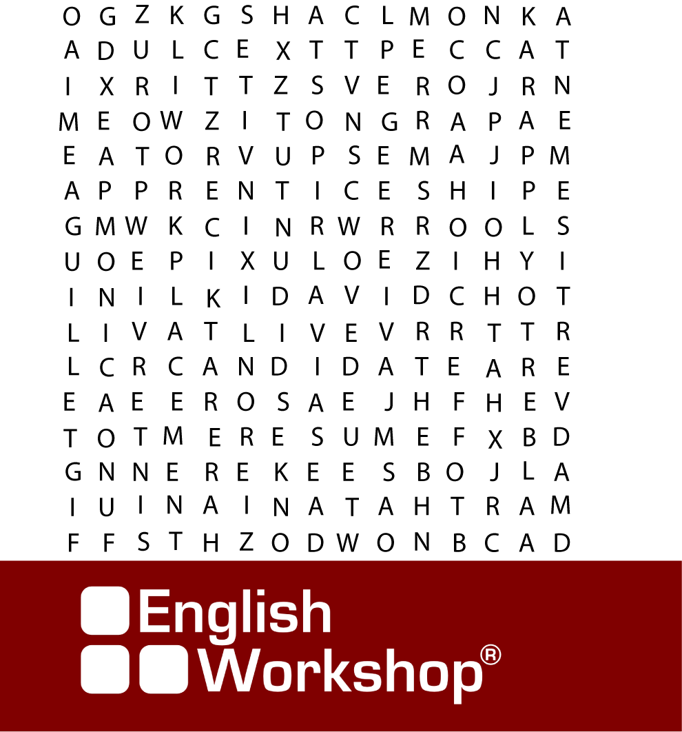 english vocabulary word search english workshop mexico